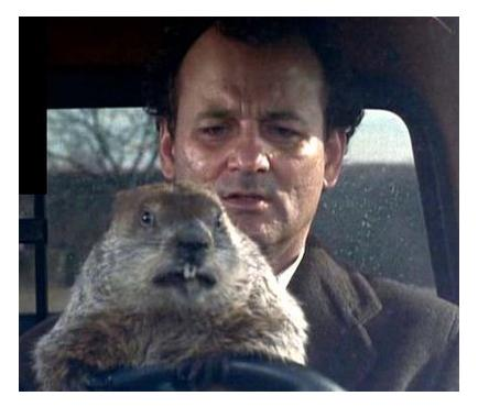 Bill Murray and unnamed groundhog in Groundhog Day (1993)